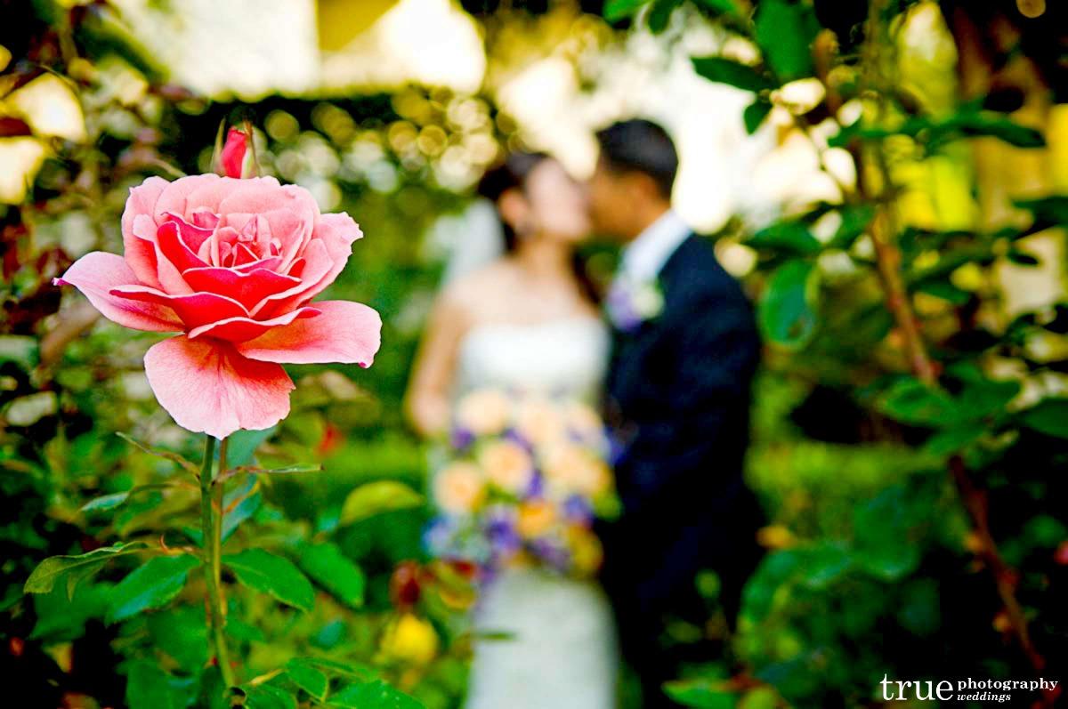 Ślub w maju 10