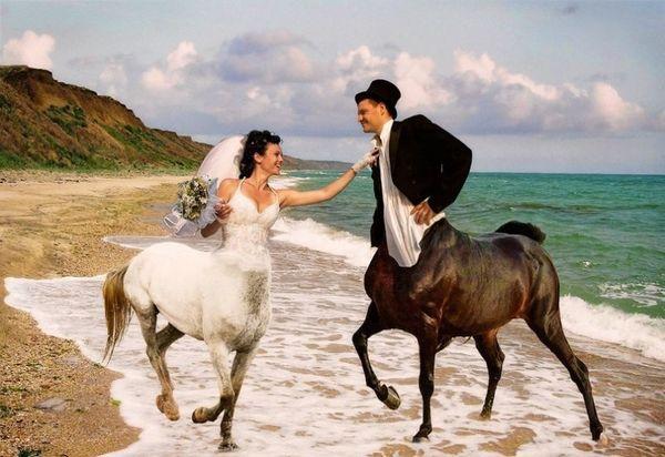 Rosyjskie zdjęcia ślubne 14
