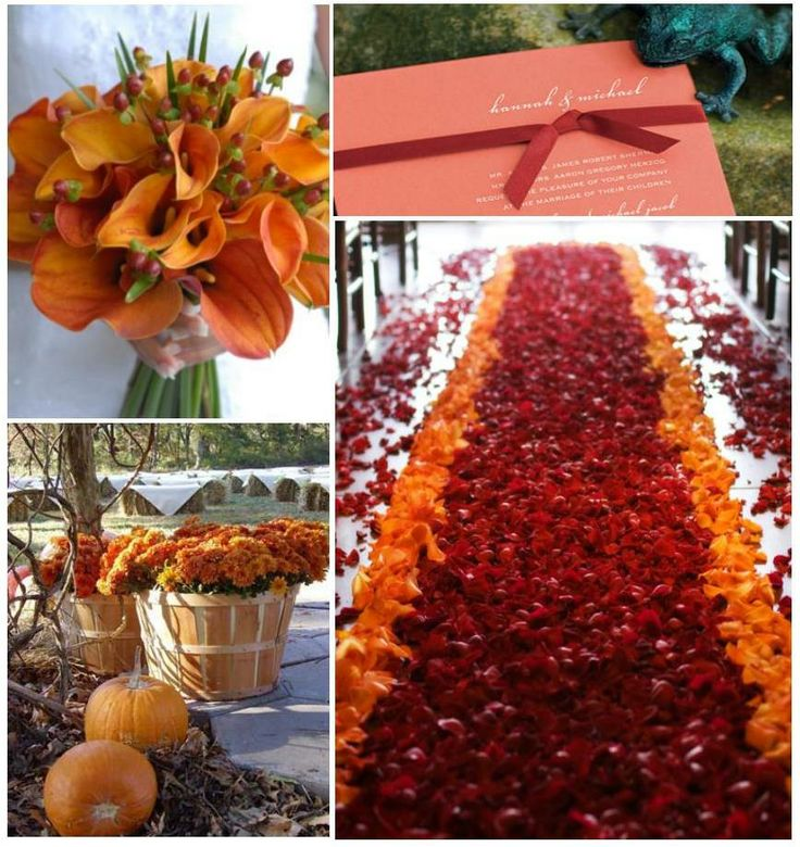 Pomarańczowe wesele 4