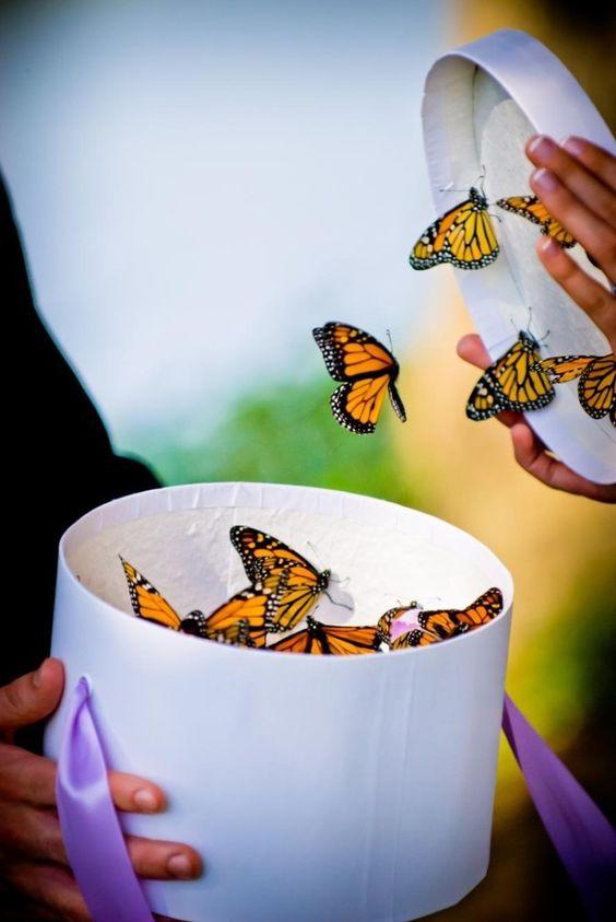 puszczanie motyli
